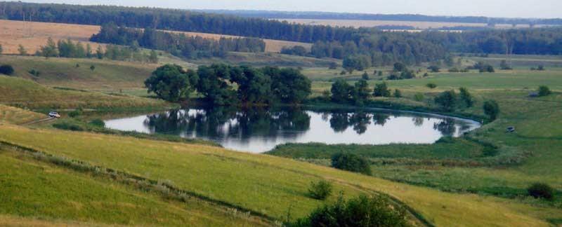 заявление о смене разрешенного использования земельного участка образец - фото 10