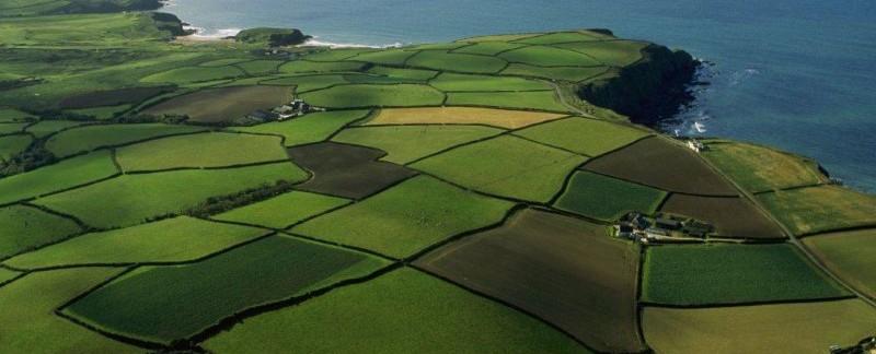 Как узнать не заложен ли земельный участок