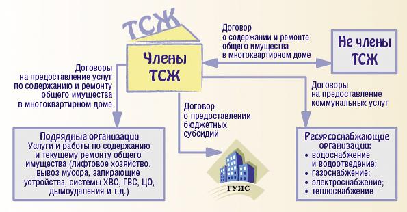 Организация работы ТСЖ.