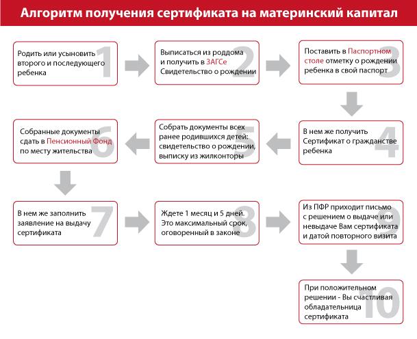 Алгоритм получения сертификата на материнский капитал.