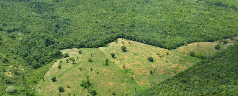 Как оформить право собственности на землю?