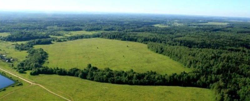льготы по выкупу земельных участков